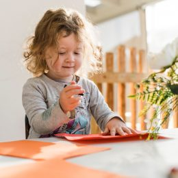 The Cubbyhouse childcare Palmerston North